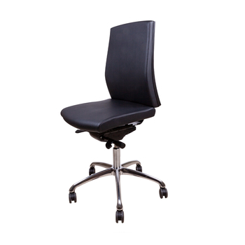 Professional Chair<br>Balance